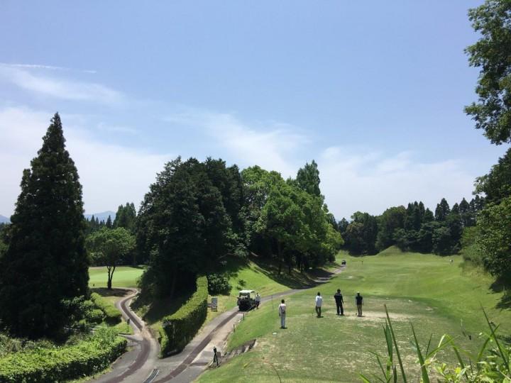 春です! お庭とゴルフの季節です!!