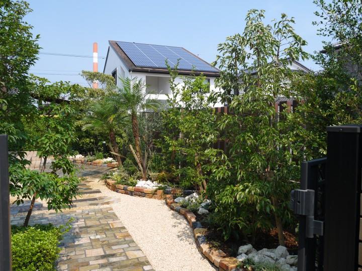 南国風のお庭ができました